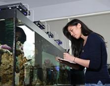 Wet and Dry Aquatic Lab